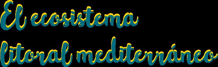 El ecosistema litoral mediterraneo